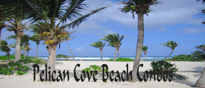 St. Croix  Beach Condos - Pelican Cove Luxury Condo Resort on the Beach